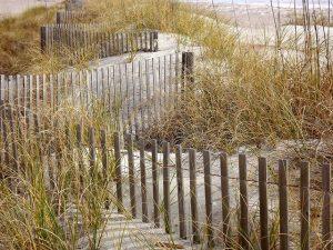זמן להתקנת גדר פרטיות